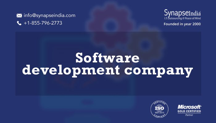 Software development company for custom-built services