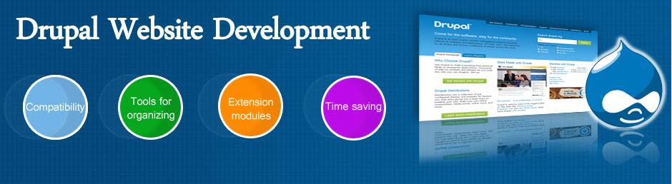 Drupal Module Development Services India