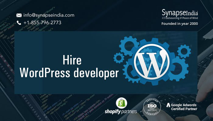 Hire WordPress developer to get bug-free web solutions