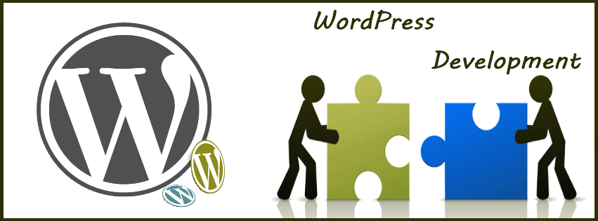 WordPress development in India