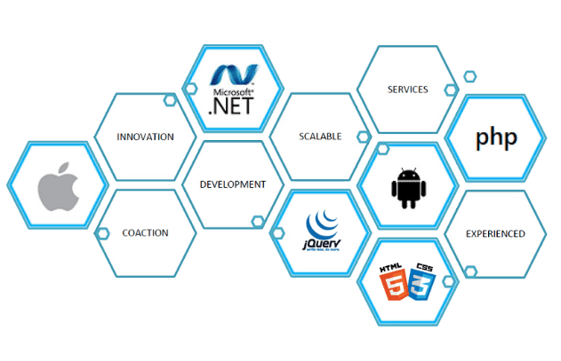 Custom Application Development Services