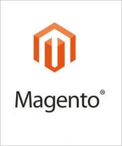 Magento development services
