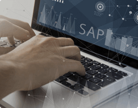 Synapseindia Entertainment SAP Development Bg