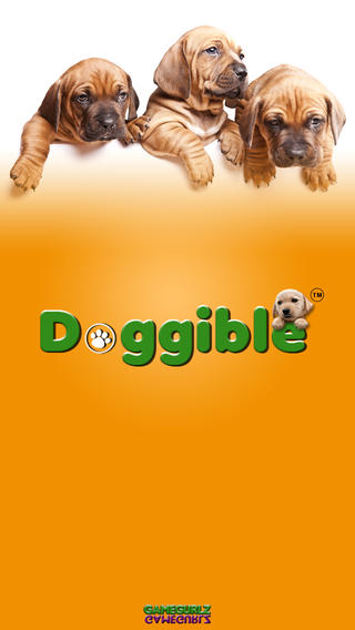Development of An Android Based Mobile App for Dog Lovers