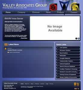Website for 'Valley Associates Group'– Global Security Corporation