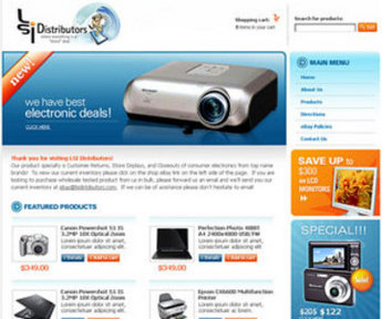 Logo and Website Redesigning for LSI Distributors