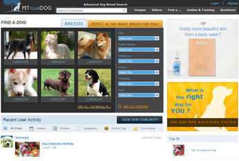 Website for Different Breed of Dogs Showcases