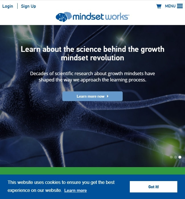 Website Maintenance for Mindset Works, an eLearning Company in USA